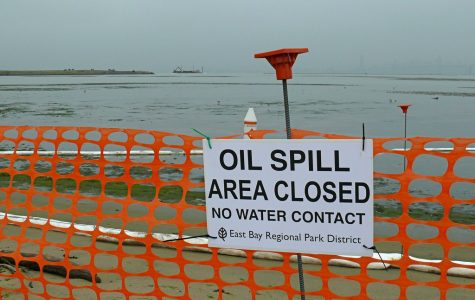 California Fits the Bill to End Oil Drilling