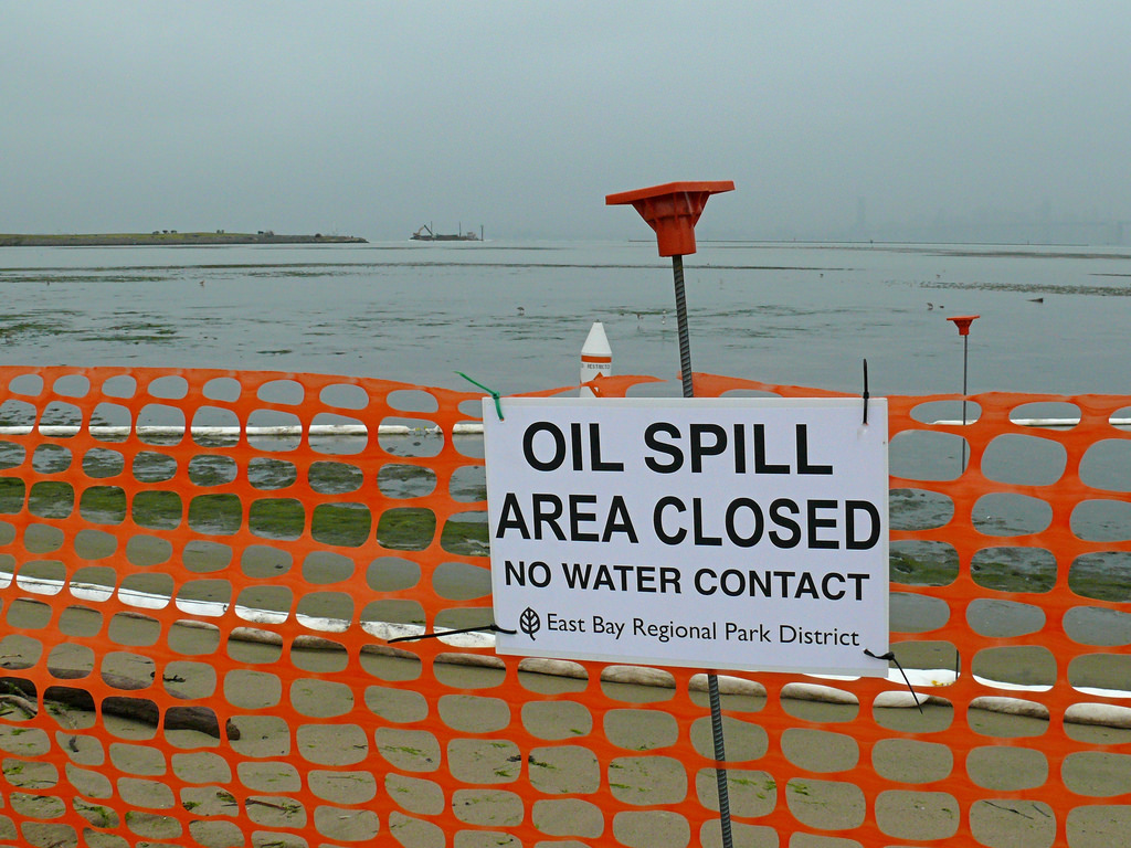 Courtesy of Ingrid Taylor An oil spill took place at San Francisco as recent as 2007 which prompted recent protests against oil drilling.