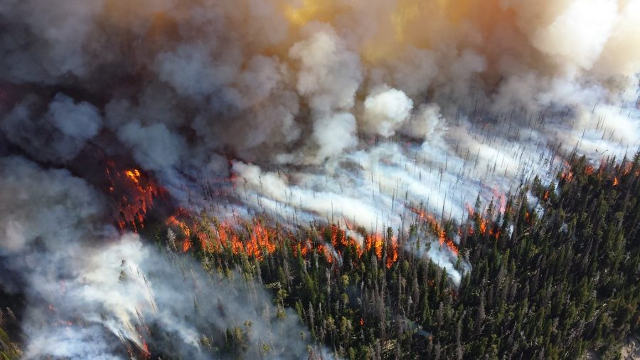 Wild fires burn acres of land across California.